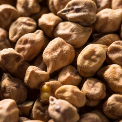 Chickpea resize